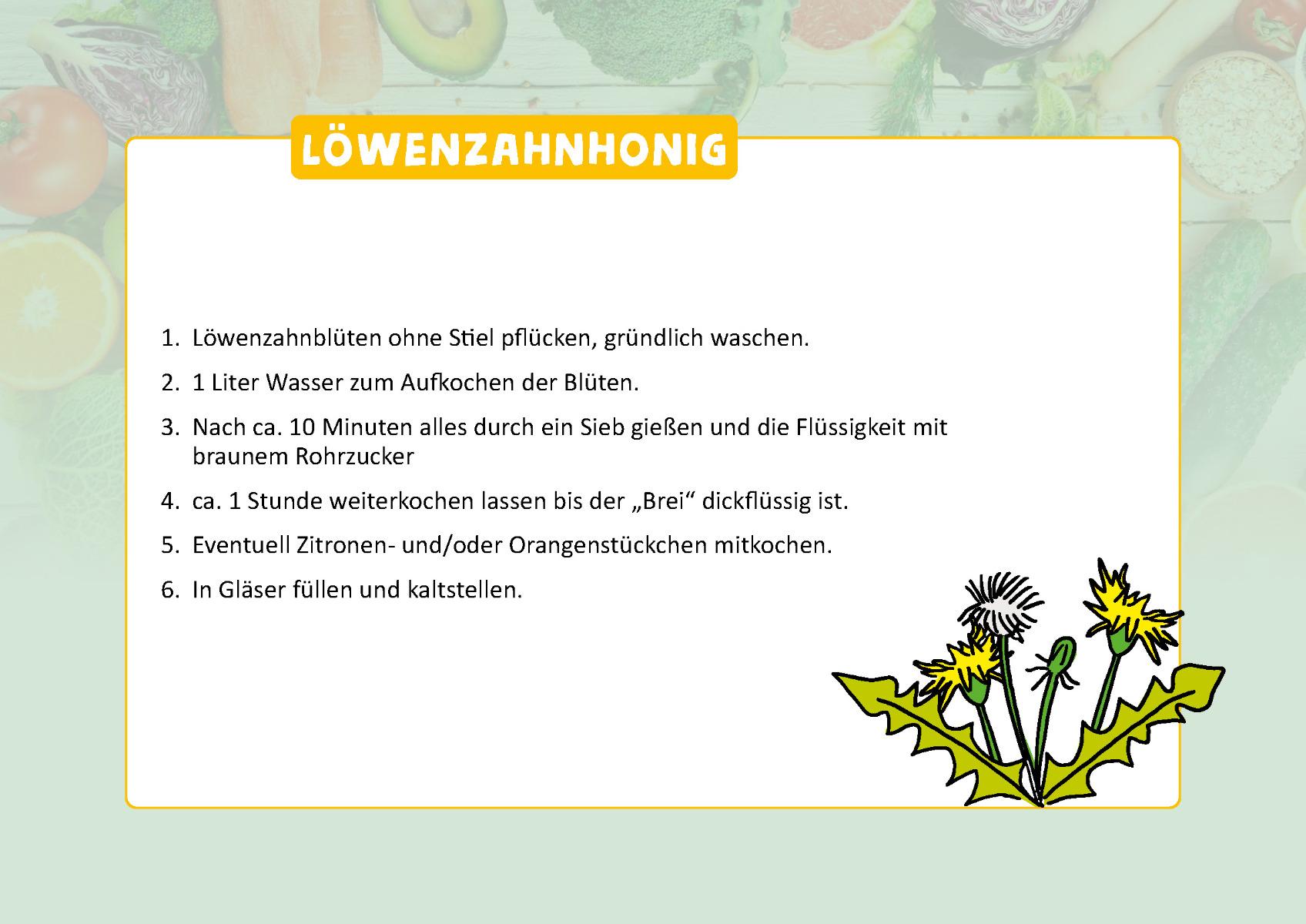Loewenzahnhonig